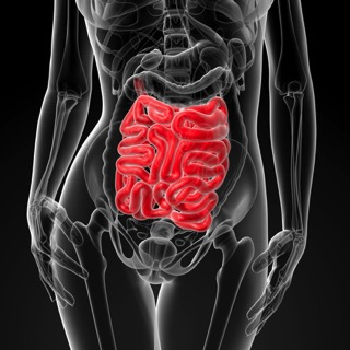 10 things that cause leaky gut copy.jpg