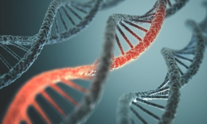 What Does The MTHFR Mutation Mean For Your Health?